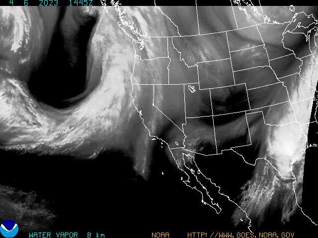 Pacific Live Satellite Image